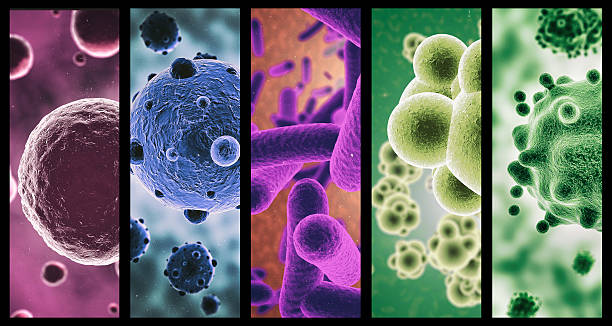 multi-colored microbes - micro organism stock photos and pictures