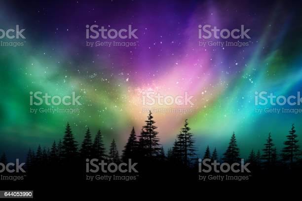 Photo of Multicolored northern lights (Aurora borealis) on Canadian forest