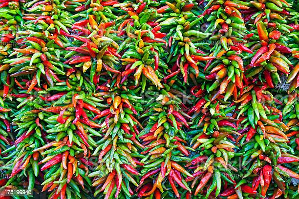 Free serrano pepper Images, Pictures, and Royalty-Free Stock
