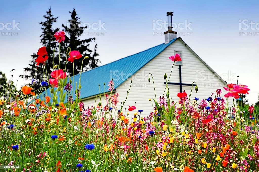 Multicolored wildflowers in front of the church stock photo