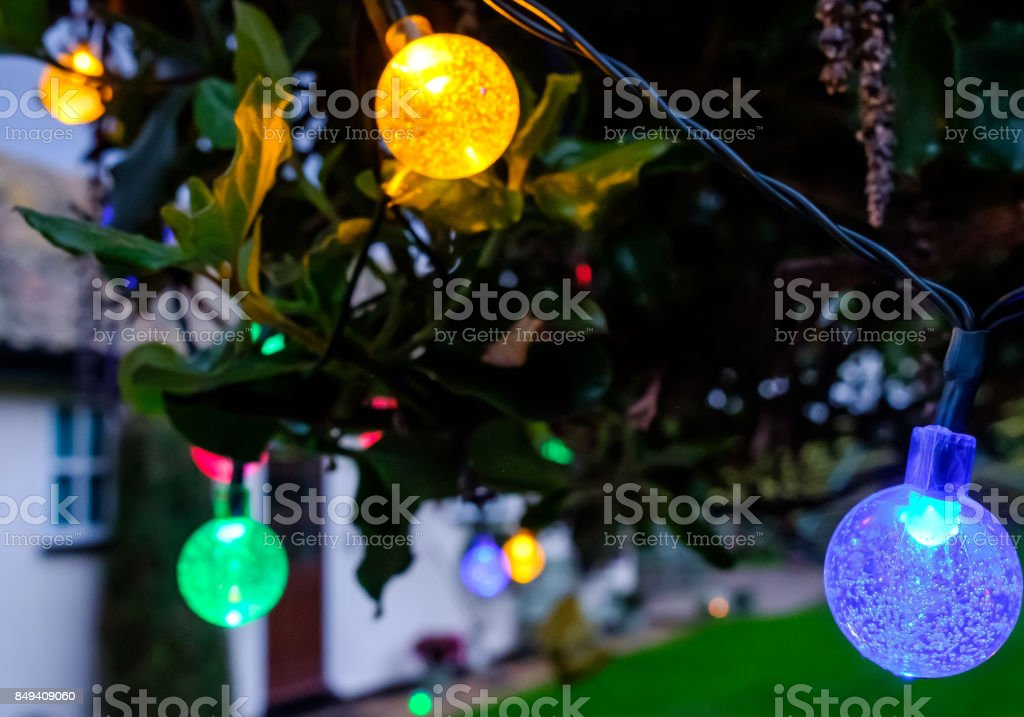 multicoloured solar powered led lights seen glowing during dusk on a tree in a large garden