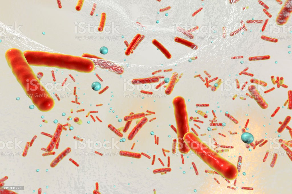 Multidrug resistant bacteria inside a biofilm stock photo