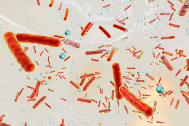 Multidrug resistant bacteria inside a biofilm stock photo