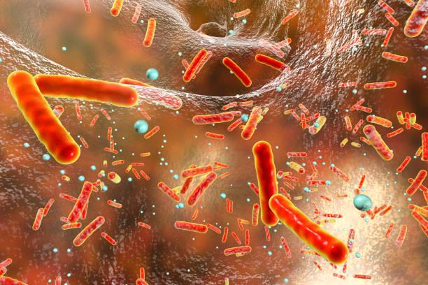 bir biyofilm içinde kökenlerinin dirençli bakteri - antibiyotik stok fotoğraflar ve resimler