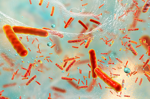 Antibiotic resistant bacteria inside a biofilm, 3D illustration. Biofilm is a community of bacteria where they aquire antibiotic resistance and communicate with each other by quorum sensing molecules