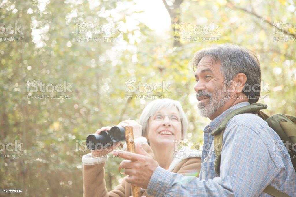 Multi-ethnic, active senior adult couple hiking in wooded forest area. stock photo