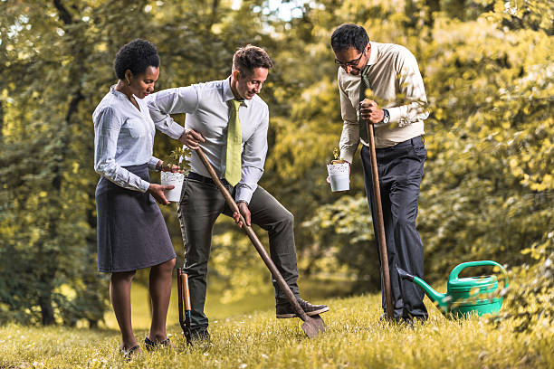 Multi-ethnic business team preparing to seed the plant in nature. stock photo
