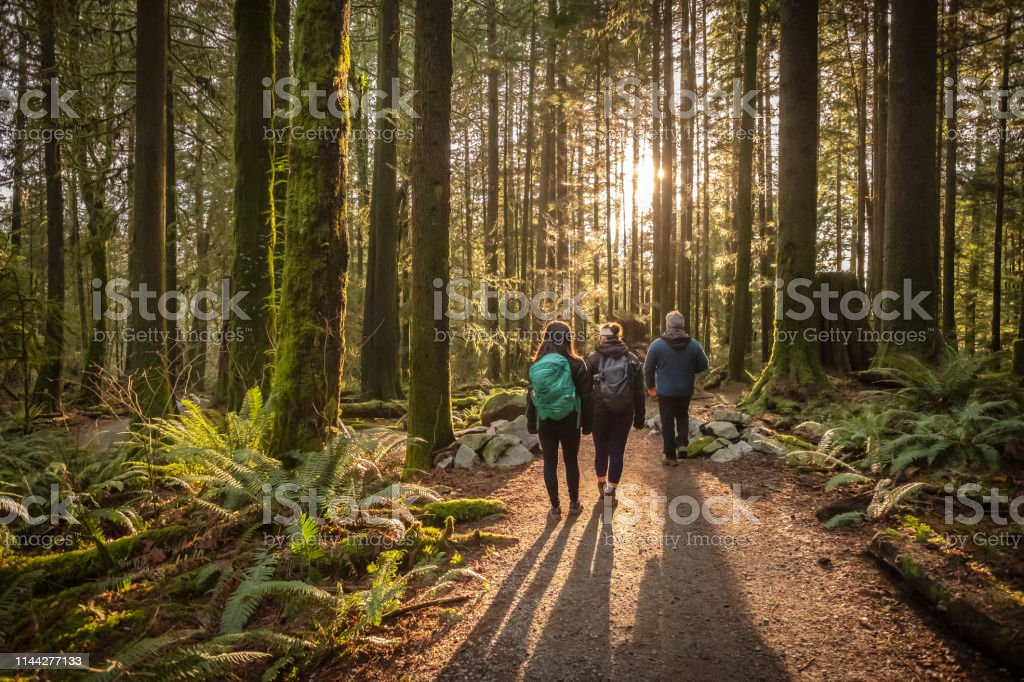 Multi-Ethnic Family Walking Along Sunlit Forest Trail, Father and Daughters Mature father and Eurasian daughters hiking in Mt. Seymour Provincial Park, North Vancouver, British Columbia, Canada 20-29 Years Stock Photo