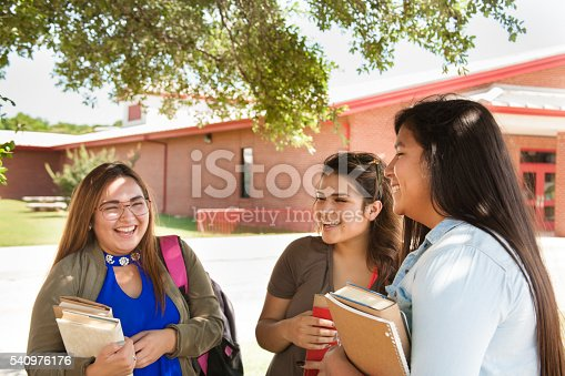 istock Multi-ethnic group of high school or college girls talking.  Campus. 540976176