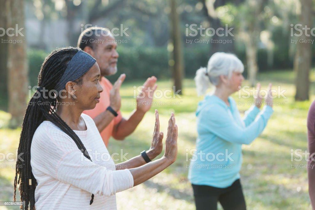 Multi-ethnic group of seniors taking tai chi class stock photo