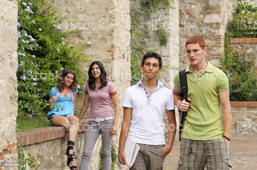 Multi-ethnic Group of Students in a Campus royalty-free stock photo