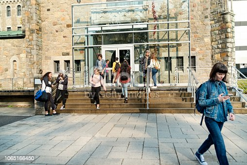 Medium group of multi-ethnic students going in and out of University-College entrance. Some are sitting and standing on a small staircase on a sunny day. Horizontal full length shot with copy space.