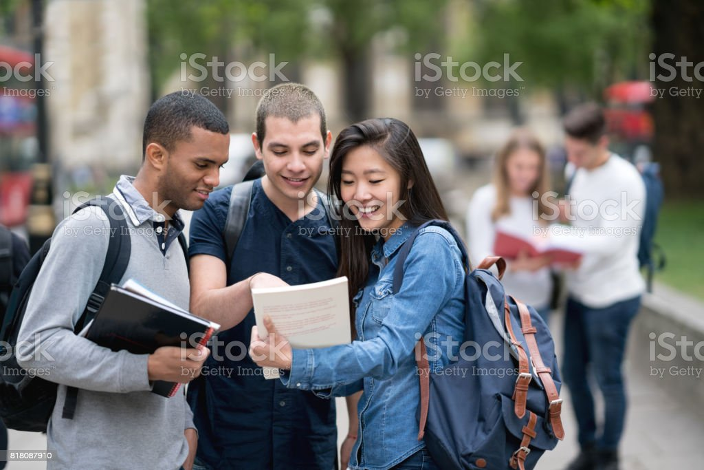 Multi-ethnic group of students studying outdoors stock photo