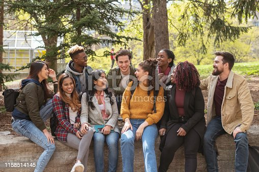 A large sized group of university-aged students, both male and female, are sitting outside on a campus wall laughing and playing around in front of the camera in this educational scene. They are joyful and carefree.