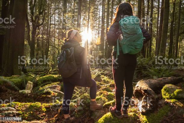 Photo of Multi-Ethnic Sisters Hiking Stop to Admire Sunlight Shining Through Forest