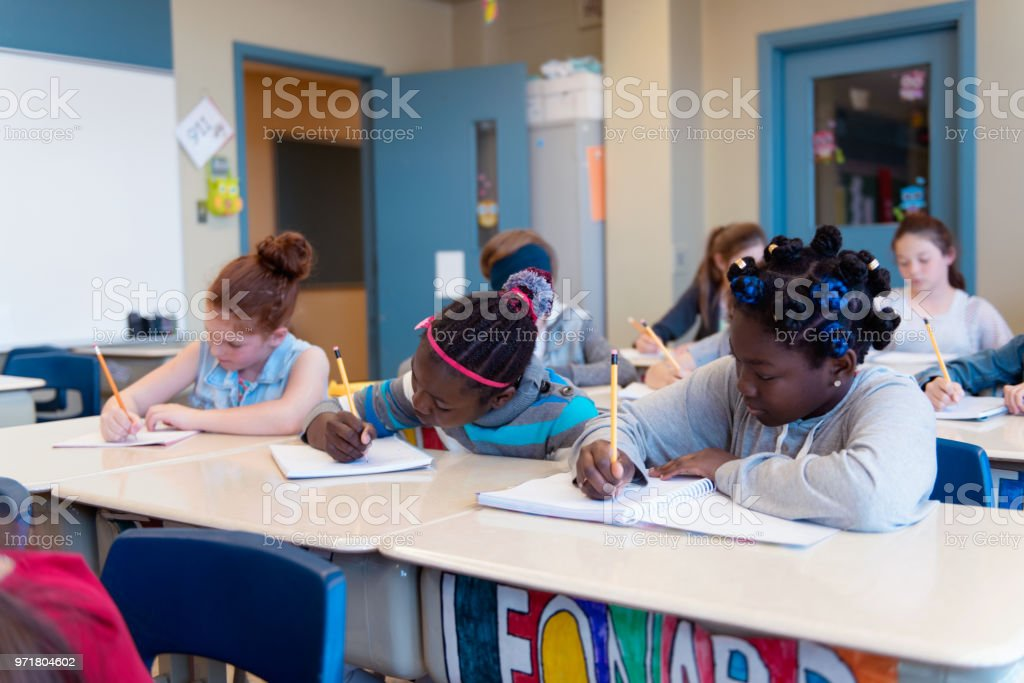 Multi-ethnic schoolgirls and shcoolboys sit into the class for their...