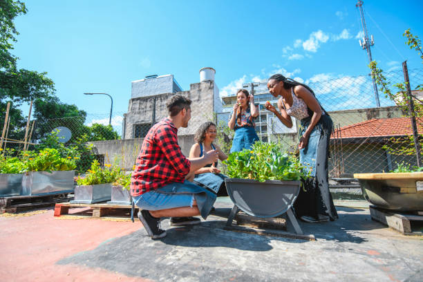 Multi-Ethnic Urban Agriculturalists Learning about Plants Group of urban gardeners in 20s and 40s caring for plants and sampling lettuce in Buenos Aires rooftop garden. community garden stock pictures, royalty-free photos & images