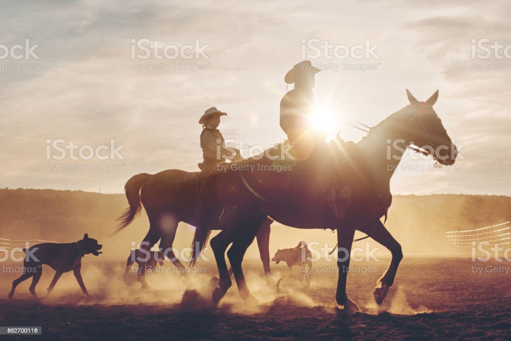 Multi-generation family riders stock photo