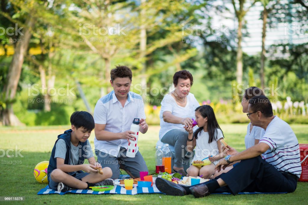 Multi-generational family picnicking in a park stock photo