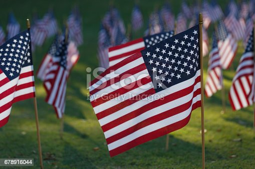 istock Multiple american flags on grass 678916044