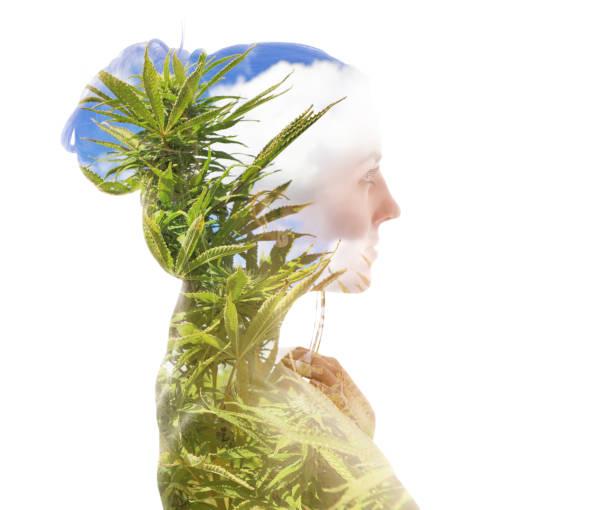 Mehrfache Exposition einer jungen Frau und Cannabispflanzen – Foto
