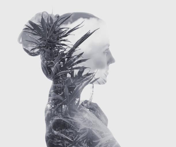 Mehrfache Exposition junger Frauen und Cannabispflanzen – Foto