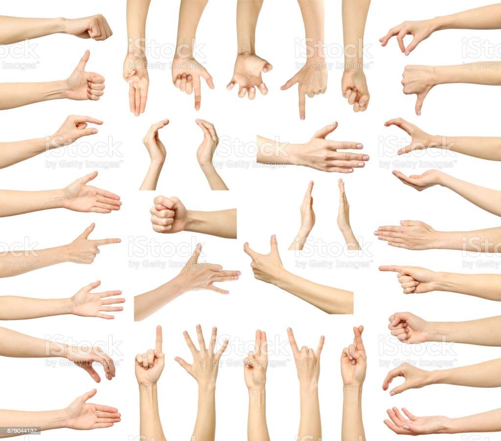 c82e010271 Ensemble d'images multiples de gestes de la main caucasien féminin isolé  sur fond blanc