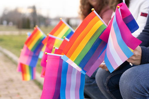 Multiple LGBTQ flags hold by people no a protest