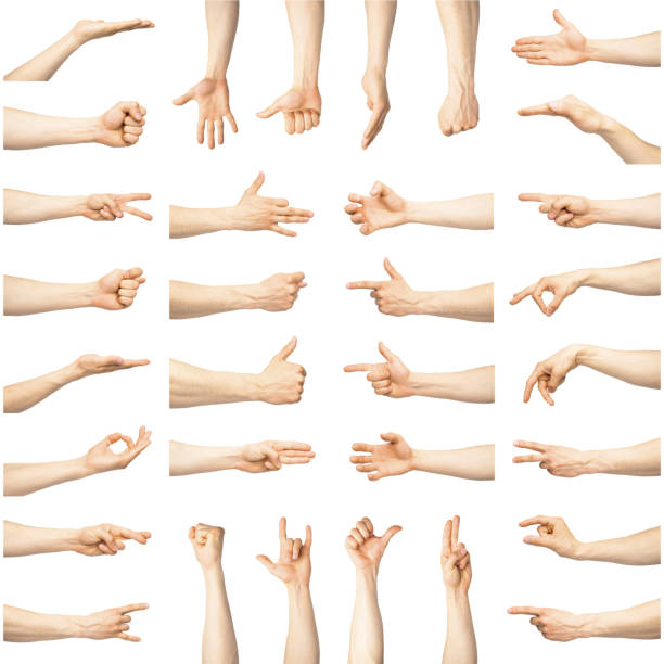 Multiple male caucasian hand gestures isolated over the white background stock photo