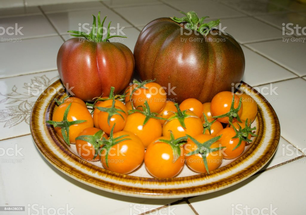 Multiple yellow/orange cherry tomatoes and two red/brown full size tomatoes on a plate on tile counter. stock photo