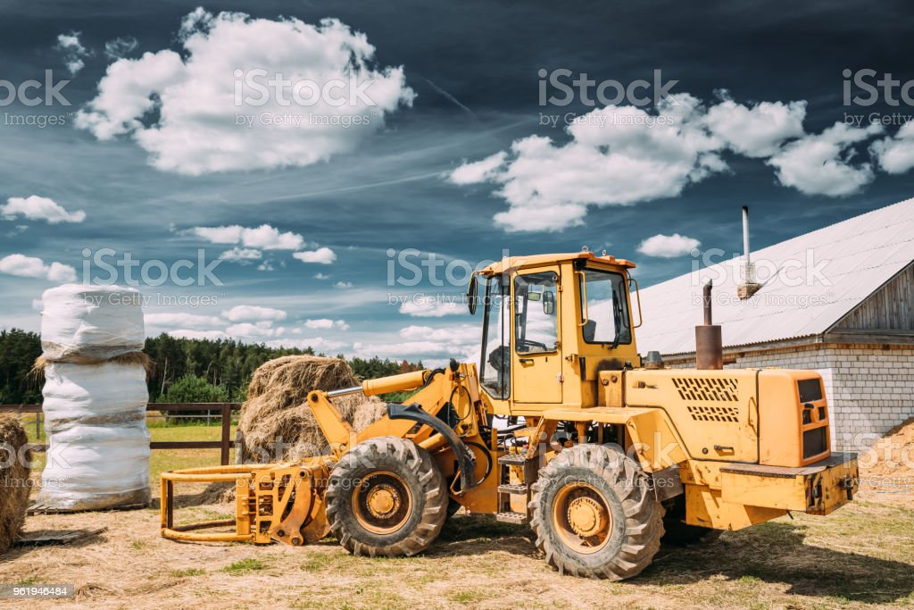 Multipurpose Wheel Loader Carry Out Works In Transportation Of Hay In Agruculture Place In Summer Sunny Day. Special Agricultural Equipment stock photo