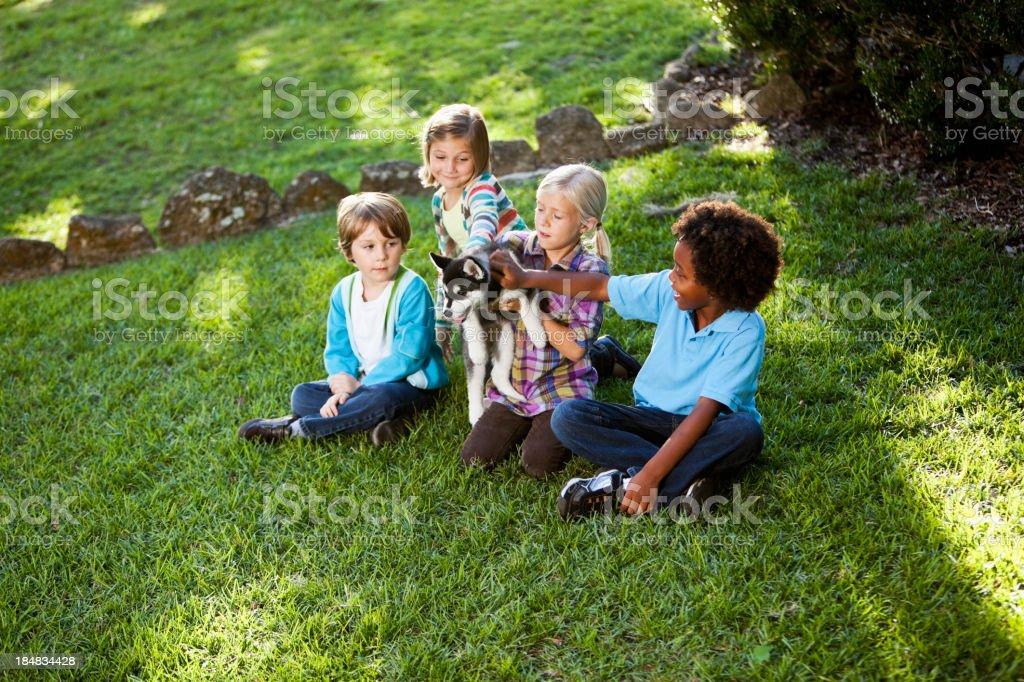 Multiracial children holding husky puppy stock photo