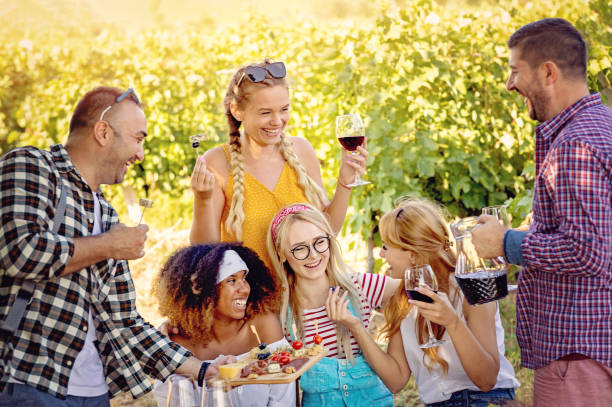 Multiracial couples and friends spending time at Picnic stock photo