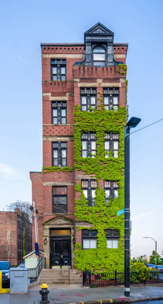 multi-story narrow red brick residential building with ivy-covered walls on a street in old boston - ivy corporate building imagens e fotografias de stock
