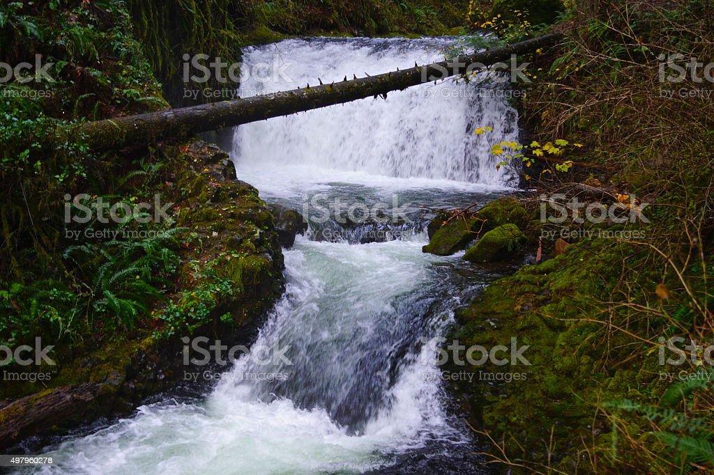 Multnomah Creek Cascade stock photo