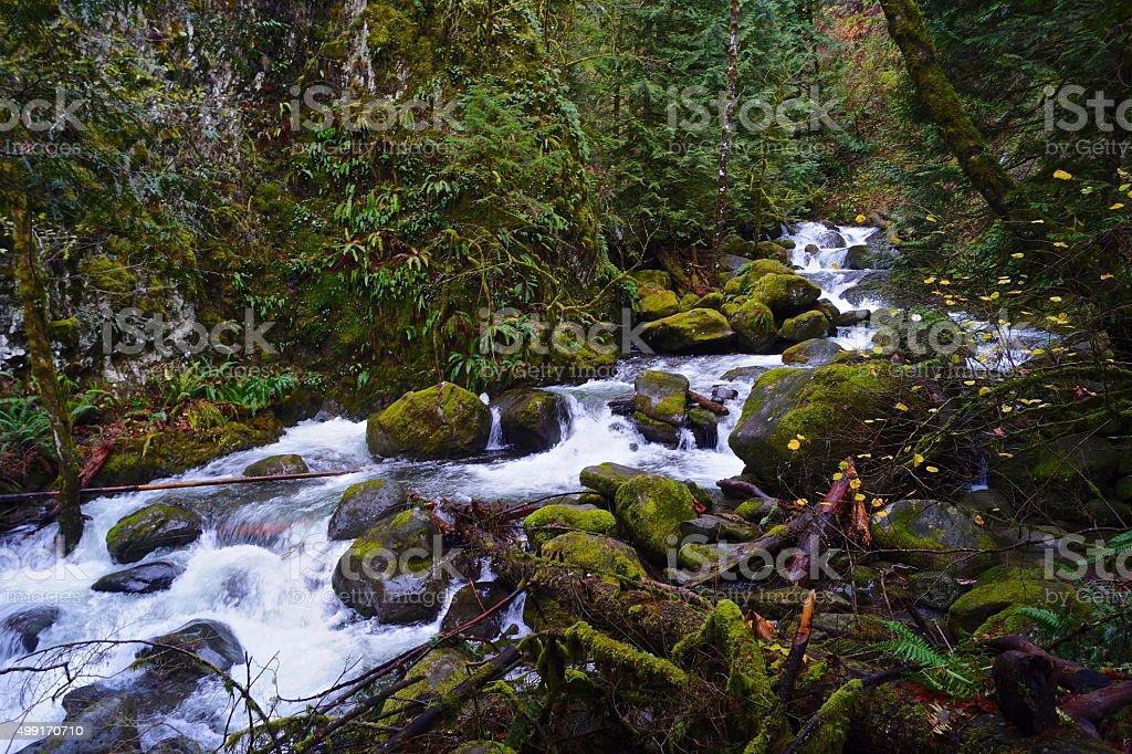 Multnomah Creek Gorge stock photo