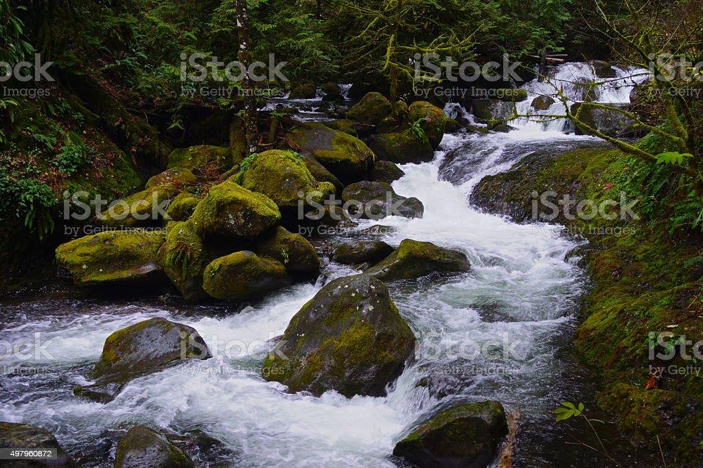 Multnomah Creek Green Rocks stock photo