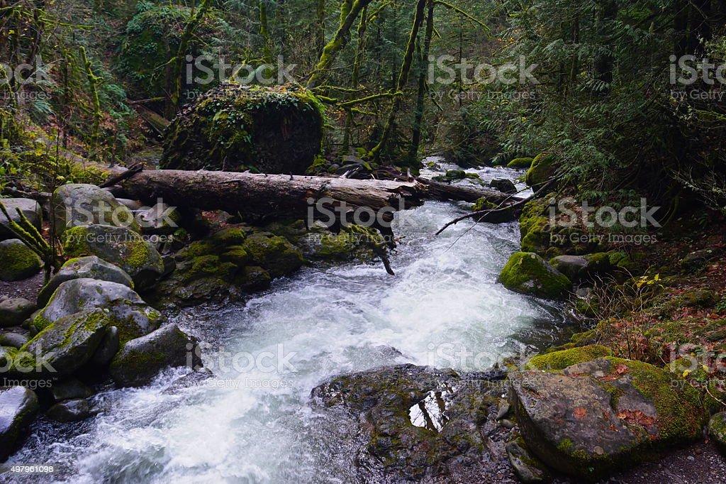 Multnomah Creek Scene stock photo
