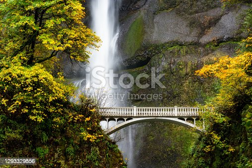 Fall colored trees and a fancy foot bridge at a large waterfall in Oregon