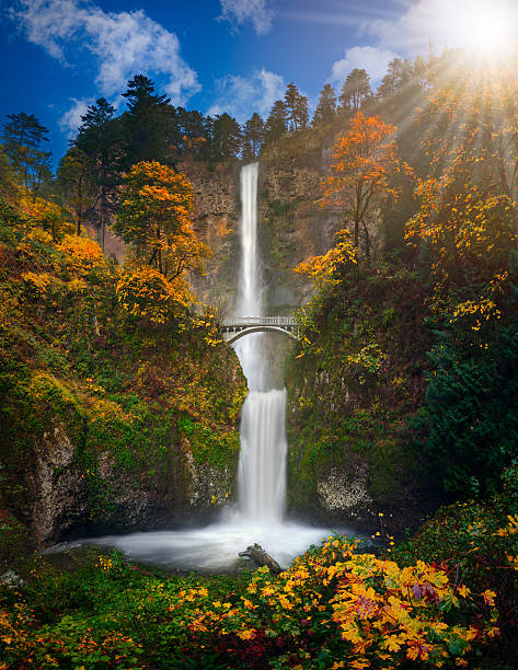 Multnomah Falls in Autumn colors  high resolution stock photo