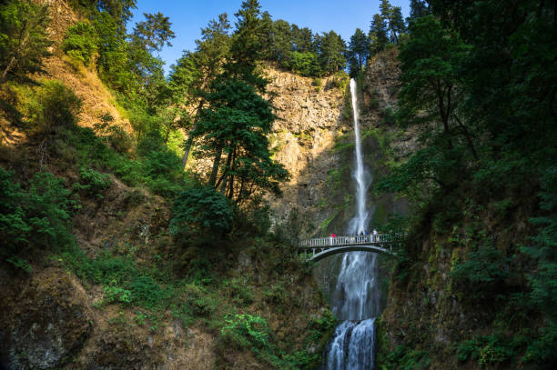 Multnomah Falls, Oregon stock photo