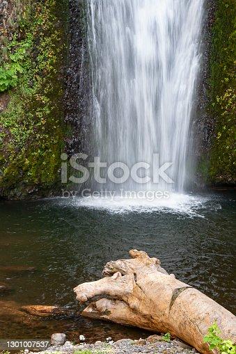 Multnomah Falls in Oregon.