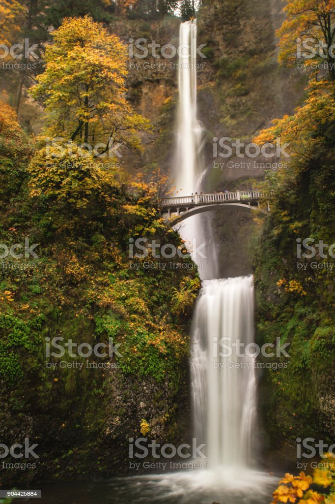 Multnomah Falls - Royalty-free Beauty In Nature Stock Photo