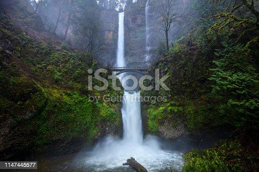 Multnomah Falls during springtime in the Columbia River Gorge, Oregon.