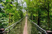 Mulu National Park - Canopy Walk
