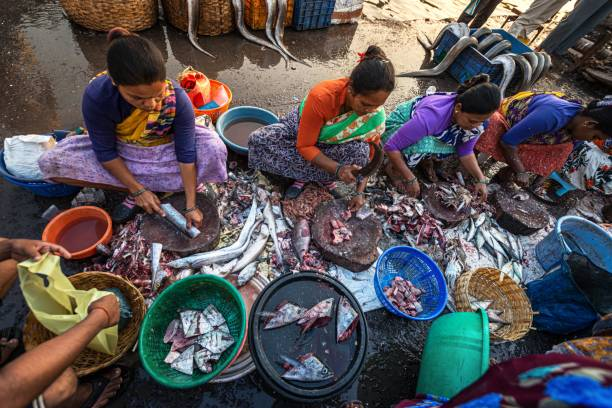 01/09/2020 Mumbai, India, women clean and sort shrimps at the most famous and largest Mumbai fish market Sassoon Docks in Colaba. eradicating poverty by 2030 stock photo