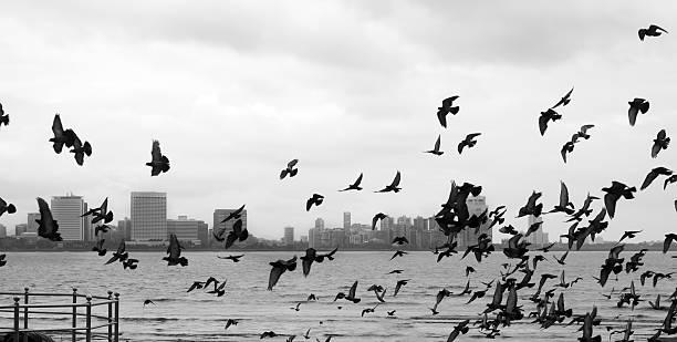 Mumbai - foto de acervo