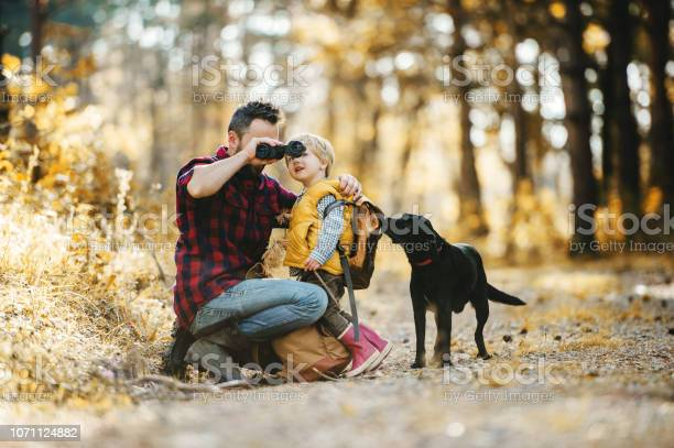 Mumford a mature father with a dog and a toddler son in an autumn picture id1071124882?b=1&k=6&m=1071124882&s=612x612&h=ycfv0mtlixwiqez hk a07i3xjxnez4bjs7diculj7a=