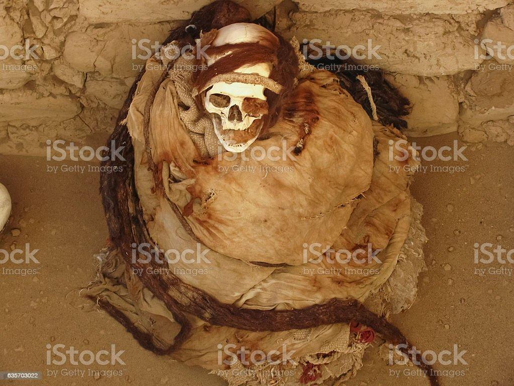 Mummy at Chauchilla Cemetary, Nazca, Peru. royalty-free stock photo