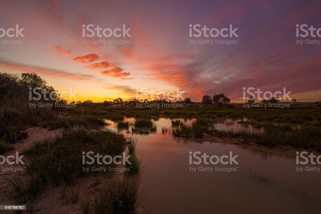 Mungerannie Waterhole stock photo